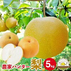 梨5kg熊本県産ブランド梨豊富な品種でお中元やお盆のお供え、敬老の日、お彼岸と多くの用途にご利用いただいています!取り扱い品種(菊水幸水豊水秋月新高新興)