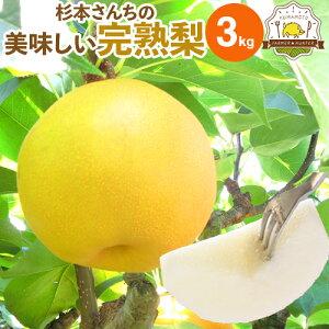 敬老の日カード選択できます!送料無料 梨 3kg 熊本県産 ブランド梨 杉本さんの完熟梨 豊富な品種でお中元やお盆のお供え、敬老の日、お彼岸と多くの用途にご利用いただいています!取り