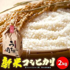 『熊本県阿蘇 内田農場 2020年新米 穫れたて美味しい!コシヒカリ2kg』お米2kg※代引き不可※