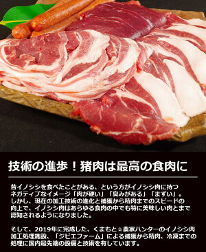 ジビエお試しセットロース・モモ・肩話題のジビエを使って、豚肉よりもヘルシーに!熊本の農産物を守る農家ハンターが捕獲した安心安全なジビエ(猪肉・イノシシ肉)を熊本県よりお届けします