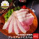 【レビュー満点評価中】お試しサイズのジビエスモークハム スライス 100g 送料無料 熊本県産天然イノシシ肉 ジビエ 猪 肉 ジビエハム …