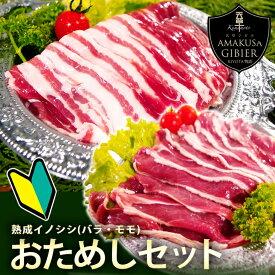 天然ジビエ お試し2点セット イノシシ肉 バラ肉・モモ肉話題のジビエを使って、豚肉よりもヘルシーに!安心安全なジビエ(猪肉・イノシシ肉)を熊本県よりお届けします農家ハンター サステナブル サスティナブル SDGs エシカル