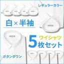 ワイシャツ レギュラー ビジネス ホワイト シンプル