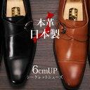 Shoes 0501
