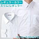 ワイシャツ ホワイト レギュラー ビジネス フォーマル パーティー