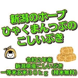 令和2年産 新潟県産 こしいぶき 一等米 玄米30kg(精米無料)