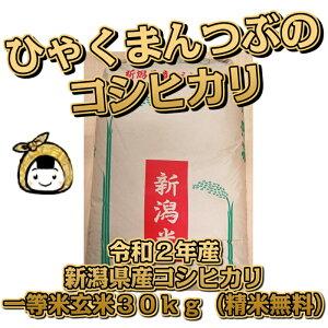 令和2年産 新潟県産 コシヒカリ 一等米 玄米30kg (精米無料)百萬粒 ひゃくまんつぶ 送料無料 こしひかり