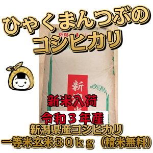 令和3年産 新潟県産 コシヒカリ 一等米 玄米30kg (精米無料)百萬粒 ひゃくまんつぶ 送料無料 こしひかり