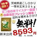 28年 茨城県産 コシヒカリ30kg 送料無料 こしひかり30kg 送料無料