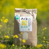 エコファーム舟枝:「令和3年産こだわりのコシヒカリさばえ菜花米(5kg)」福井県認証の特別栽培米