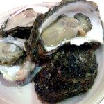 高川物産:日本海を丸呑み!「石川県産岩牡蠣生食用」(2kg