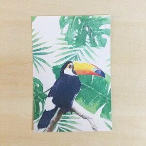 オニオオハシ ポストカード 鳥 鳥好き 雑貨 イラスト アニマル かわいい グッズ プレゼント ギフト 年賀状 暑中見舞い 暑中お見舞 おにおおはし オオハシ オオオオハシ ブラジル 国鳥 野鳥