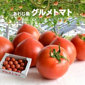 【産地直送】あわじ島グルメトマト 1kg ルネッサンス〈クール冷蔵便〉【淡路 三谷農園】