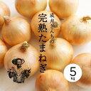 【送料無料】【産地直送】成井さんちの完熟たまねぎ 5kg【淡路島】