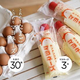 【産地直送】カンナンファームの卵&マヨセット[やまぶき卵 10個入×3パック(30個入)+カンナンファームのマヨネーズ【添加物不使用】3個セット]【丹波 カンナンファーム】