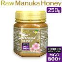 AngelBean マヌカハニー MGO:800+【実測:955 活性21.8】プレミアム生タイプ 最高レベル マヌカ蜂蜜 ニュージーランド…