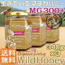 ワイルドハニー MG(MGO)300+ (UMF/MGS11〜12+)酵素が生きているマヌカハニー・生タイプ 1,020g(340g×3) 送料無料/as