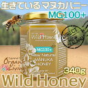 マヌカハニー 貴重な生タイプ【MG100+】酵素が生きている天然マヌカ蜂蜜[ワイルドハニー] 340g /as