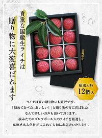 ライチ化粧箱1キロ(大玉)