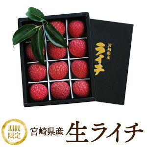 【送料無料】宮崎県産 生ライチ 化粧箱500グラム 厳選大粒12個入 予約受付開始