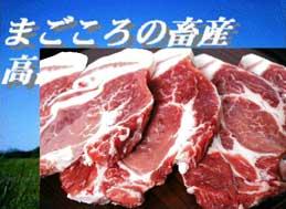 白金豚・愛のファミリーパック(カタロース5) 特別扱品【岩手県_物産展】