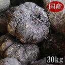 平成28年度秋収穫の国産こんにゃく芋 30キロ 業務用にも