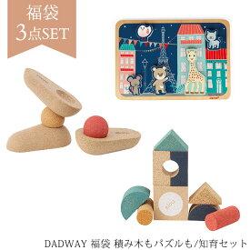 【数量限定】 DADWAY 福袋 積み木もパズルも/知育セット 福袋 ラッキーパック まとめ買い 赤ちゃん ベビー