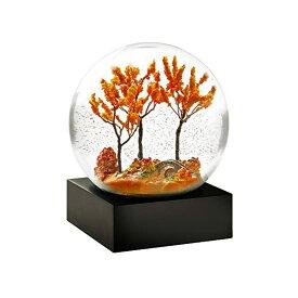 スノードーム 秋 オータム 落ち葉 紅葉 クリスマス プレゼント サンタクロース ツリー CoolSnowGlobes Autumn Cool Snow Globe