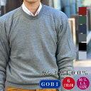 【シーズンOFF特別期間中】カシミヤ セーター メンズ M-LL 2310 ニット カシミアセーター 送料無料 楽ギフ_包装 カシ…