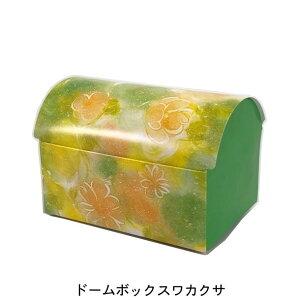 ドームボックス ワカクサ 小(200枚) 130×90×90mm プチギフト箱 クッキーギフト箱 パッケージ中澤