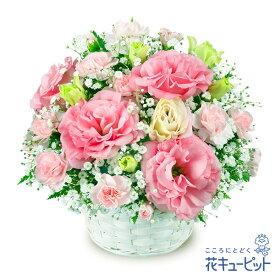 花キューピット【お祝い】トルコキキョウのアレンジメントyc00-511028 誕生日 退職 歓送迎 結婚 記念日 プレゼント