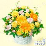 オレンジガーベラのアレンジメント花キューピット