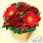 赤ガーベラと赤バラのアレンジメント花キューピット