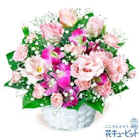 花キューピット【誕生日フラワーギフト】トルコキキョウとデンファレのアレンジメントya00-511587 花 誕生日 お祝い 記念日 プレゼント