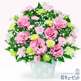 花キューピット【お祝い】トルコキキョウのピンクアレンジメントyc00-511864 誕生日 退職 歓送迎 結婚 記念日 プレゼント【あす楽対応】