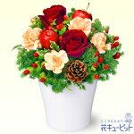 赤バラのウィンターアレンジメント花キューピット