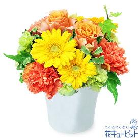 花キューピット【お見舞い】オレンジバラとガーベラのナチュラルアレンジメントyk00-512035 花 ギフト プレゼント