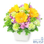 春のガーデンアレンジメント(イエロー)花キューピット