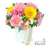 2色ガーベラのナチュラルアレンジメント花キューピット