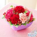 花キューピット【母の日ギフト】mt01yr-521230Anniversaryママ(ピンク)