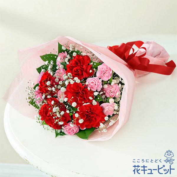 花キューピット【母の日ギフト】mt01yr-521269カーネーションの花束