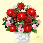 赤バラと赤ガーベラのスクエアバスケット花キューピット