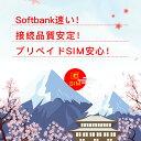 『最終利用可能日は2021年5月8日』Softbank プリペイドデータ専用SIM 10GBに最大180日間(残量確認・容量リチャージ・…