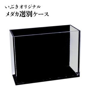 オリジナルメダカ選別ケース