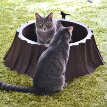 【猫】【トイレ】【大型】【おしゃれ】【スコップ付き】【猫用トイレ】【iCat】【アイキャット】【オリジナル切り株の猫トイレット】[メール便不可]
