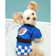 【浴衣】【犬】【服】MIX1.8kgのCOCOくんは青色のSを着用