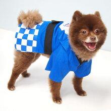 【浴衣】【犬】【服】ポメ4.3kgの獅子丸くんは青色のLを着用
