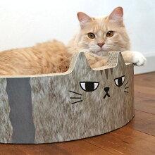 ネコちゃんのゆるい表情に癒されます