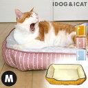 【ベッド売り尽くし★45%OFF】【 猫 ベッド 】ひんやりBOXベッド ストライプスター Mサイズ【 あす楽 翌日配送 】【 …