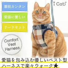 iCat猫用コンフォートハーネスリード付きリボンとチェックアイキャット。